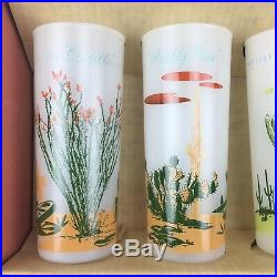 8 Vintage Blakely Oil Arizona Cactus Frosted Glasses In Box